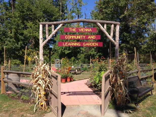 NEVCA Vienna Community and Learning Garden