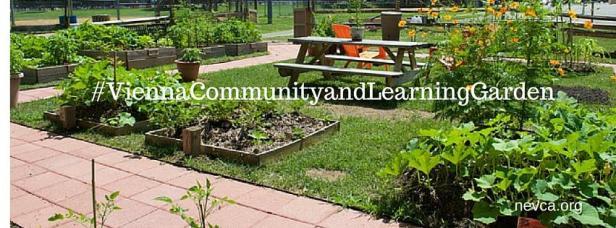 Vienna VA volunteer garden