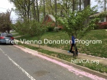 Town of Vienna tree program